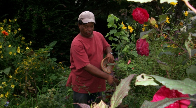 Voices from the 'Hood: Chip Jones, Butterfly Gardener