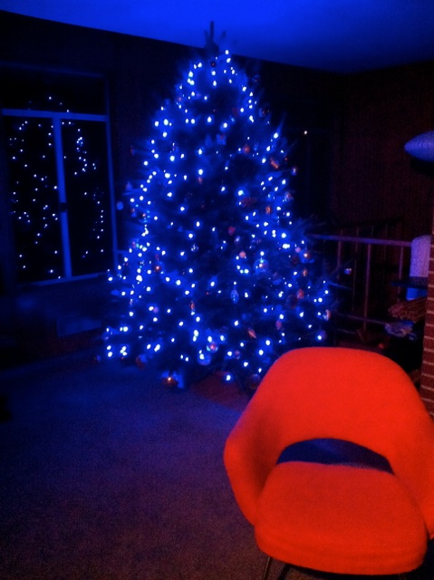 December 2015 HOM - 2715 Rosedale - Christmas Tree